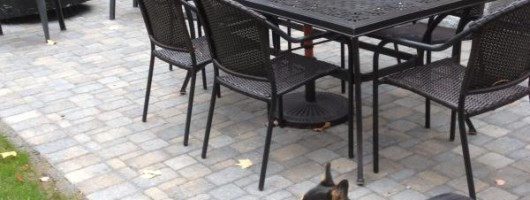 Winthrop, Maine Patio Installed with furniture