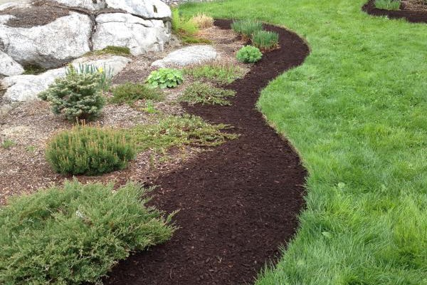 Monmouth, Maine Driveway bed After Edging & Mulch