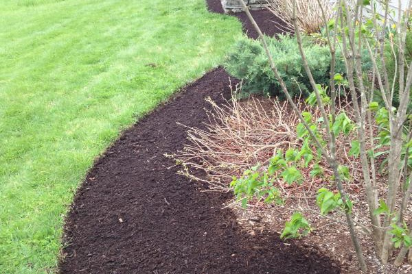 Monmouth, Maine Foundation bed After Edging & Mulch